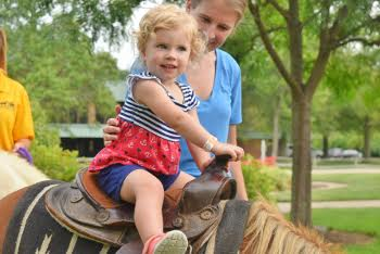 Petting zoos and pony rides - the perfect addition to your
