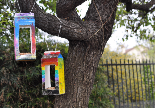 DIY bird feeders made from old milk cartons hanging from a tree