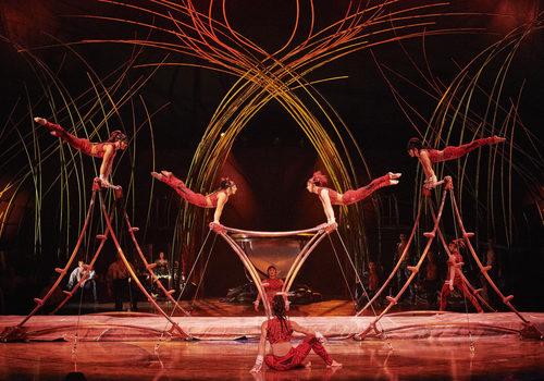 Cirque du Soleil Amaluna January 2020
