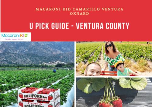 U Pick Guide Ventura County
