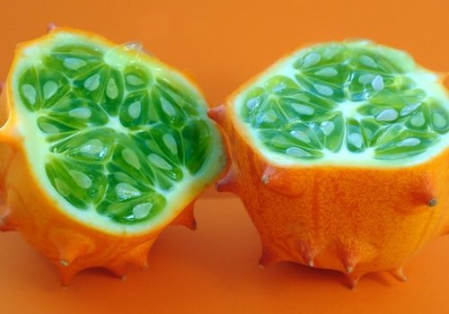 Weird Food Horned Melon