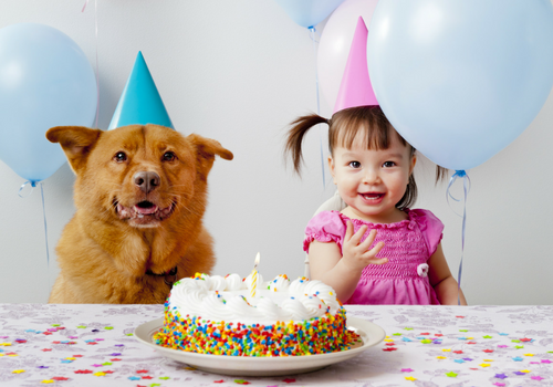 girl and dog with birthday cake