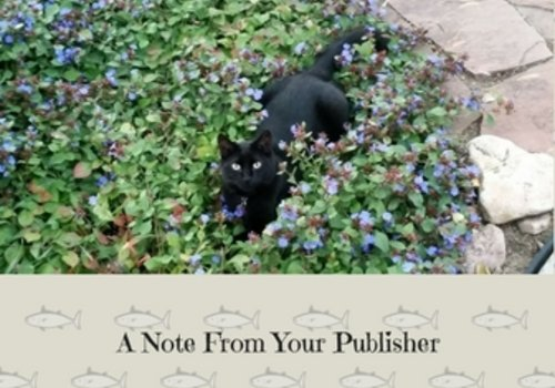 Furby A Note From Your Publisher