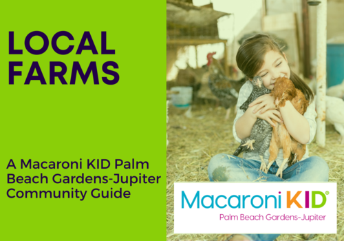 Local Farms in Palm Beach County and Nearby