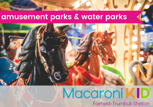 Amusement Parks and Water Parks