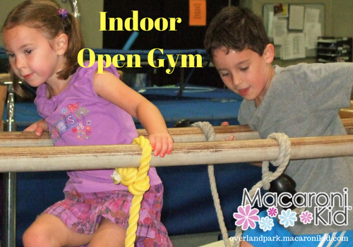 Open Gym Indoor Fun