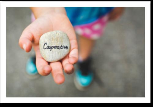 Cooperative Redeemer
