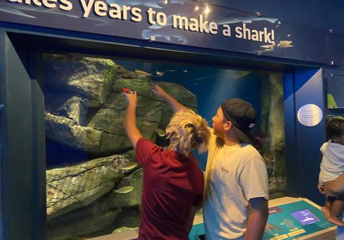 visit New York Aquarium in Brooklyn New York