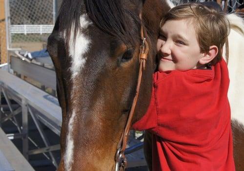 valkyrie ranch horseback riding lessons