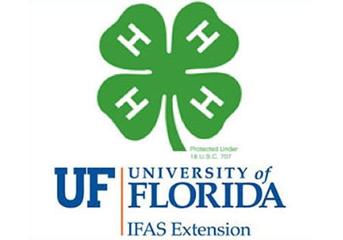 St. Lucie County 4-H