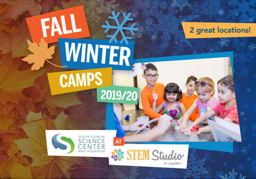STEM Studio and SF Science Center Fall and Winter Camps
