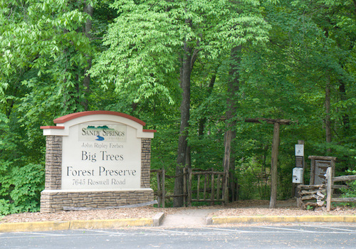 Big Trees Forrest Preserve