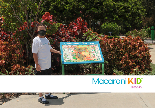 5 Great Parks and Playgrounds in the Brandon Area