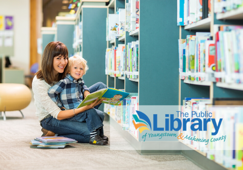 Public Library Cover Image