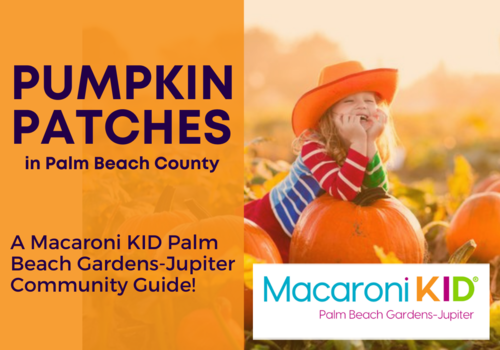 Great Local Pumpkin Patches in the Palm Beach County Area 2021