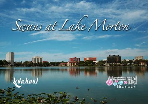 Lake Morton. picture