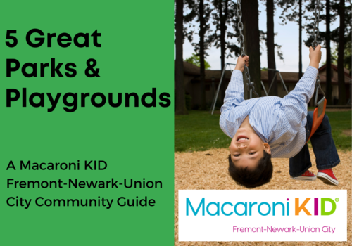 5 Great Parks and Playgrounds in Fremont, Newark, and Union City