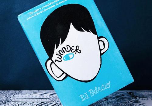 book review wonder
