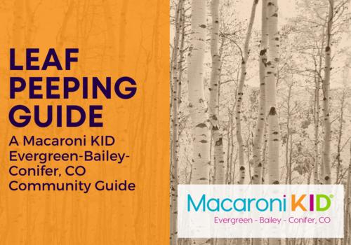 Leaf Peeping Guide - Evergreen