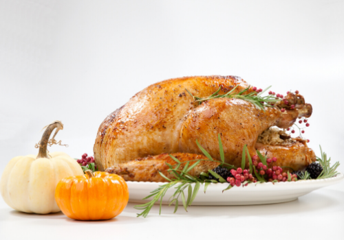 Turkey Thanksgiving Fall