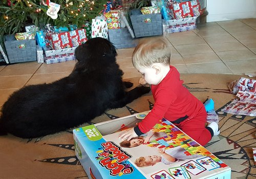 Baby Opening Toys on Christmas