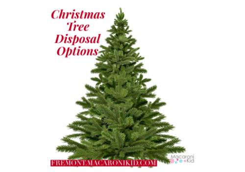 Christmas Tree Disposal Options