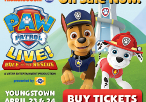 Paw Patrol Live on sale now