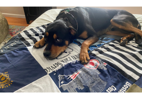 Made in USA Custom T-Shirt Quilt Great Gift Idea