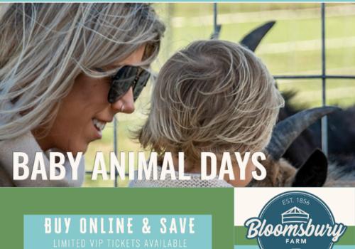 Bloomsbury Farm Cedar Rapids Baby Animal Days Atkins Iowa