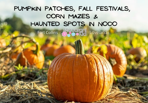 Pumpkin Patches, Fall Festivals Corn Mazes and Haunted spots in NOCO