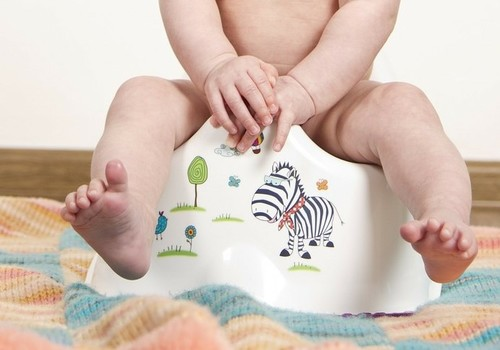 Toilet training your child: when and how to start