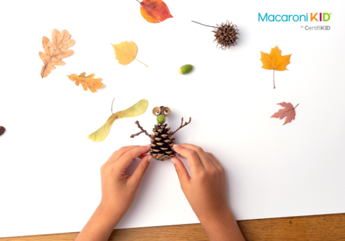 pine cone fall or autumn craft
