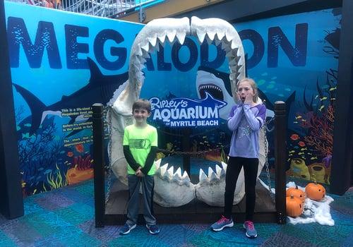 Sea At Ripley S Aquarium Myrtle Beach