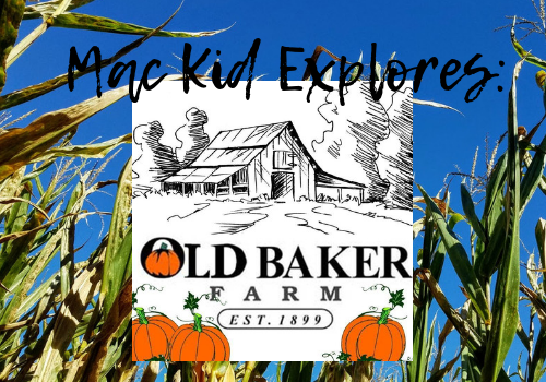 Macaroni Kid explores and reviews Old Baker Farm in Harpersville, Alabama - pumpkin patch and corn maze