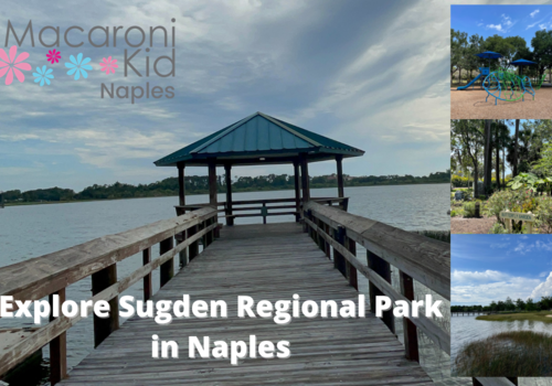 Sugden Regional Park