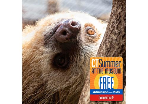 CT Beardsley Zoo