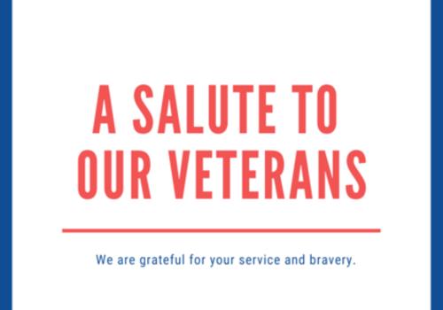 Veteran's Day, Salute, Tribute