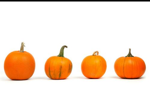 easy DIY pumpkin spice recipes