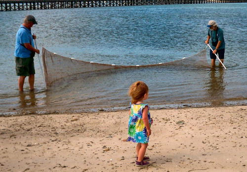 Free Summer Programs at Duxbury Beach