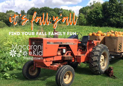 Find your family fun in the fall