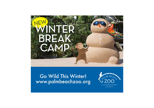 Zoo Winter Camp Article