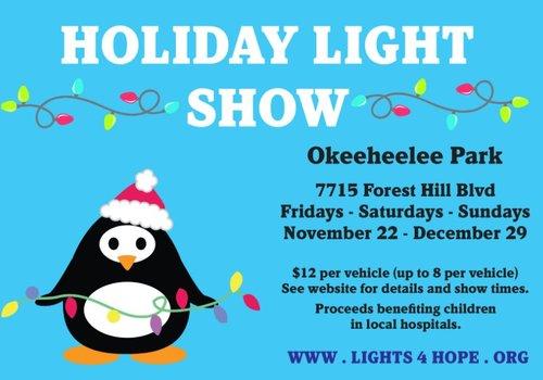 Holiday Light Show 4 Hope