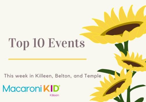 three sunflowers on a white background with the words top 10 events in killeen, belton, and temple macaroni kid killeen