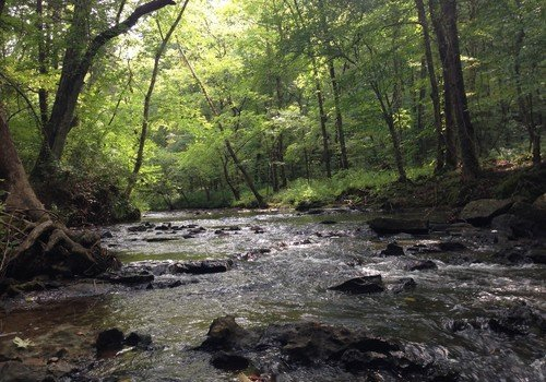 Beautiful Shoal Creek winds through Montevallo, Alabama's newest park
