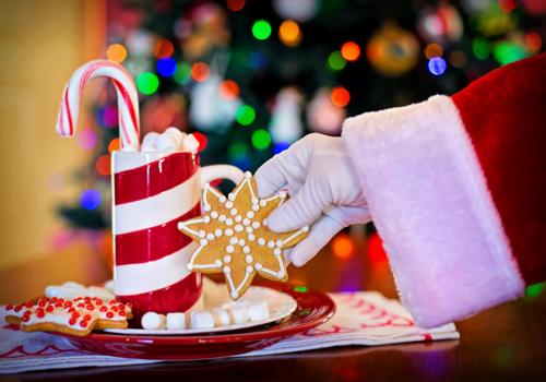 Santa Christmas Holiday