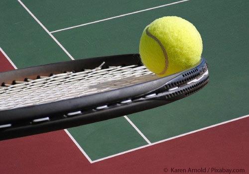 Tennis Ball on Tennis Racquet