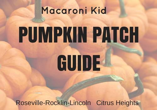Pumpkin Patches in Placer, Sacramento, El Dorado and surrounding Counties CA