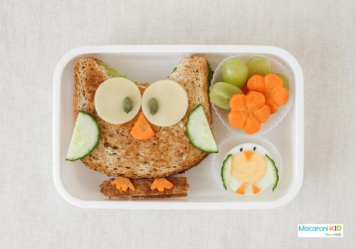 Owl healthy sandwich lunch box, fun food art for kids