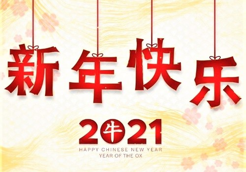 Chinese Lunar New Year The Year of the Ox