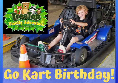 Review of TreeTop Family Adventure for birthday parties - go karts, arcade, mini golf, near Birmingham, Alabama